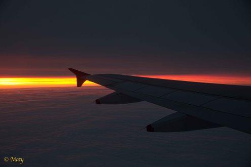 Orange sunrise plus wing